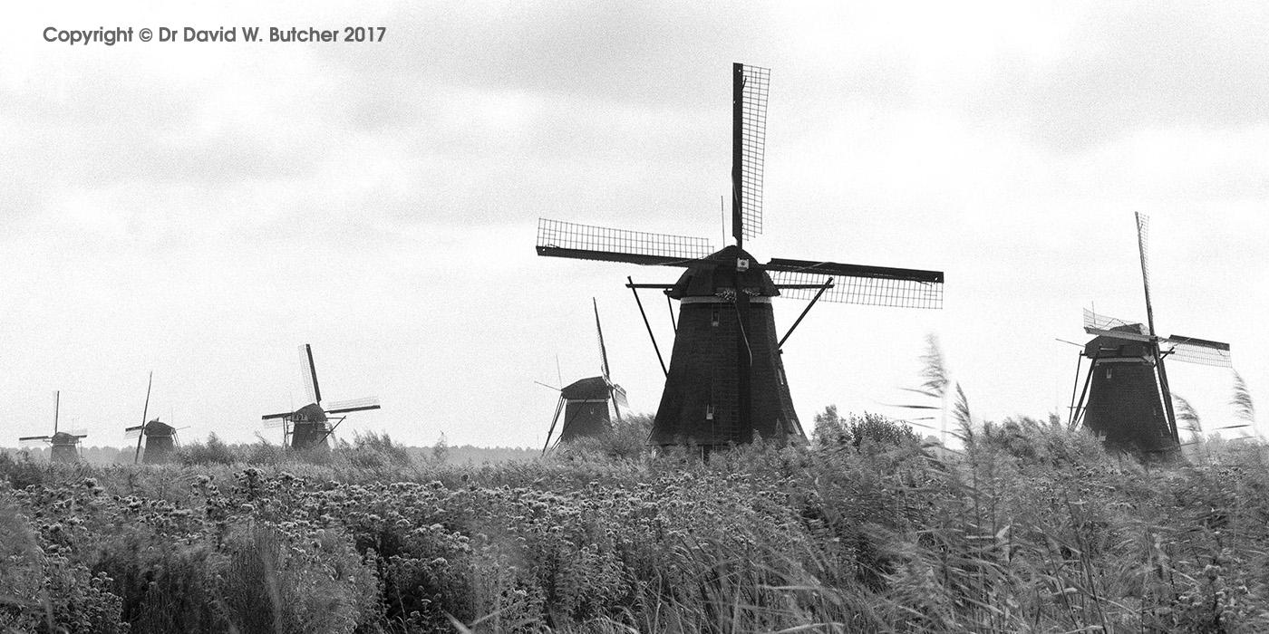 Kinderdijk Windmills, Rotterdam, Netherlands