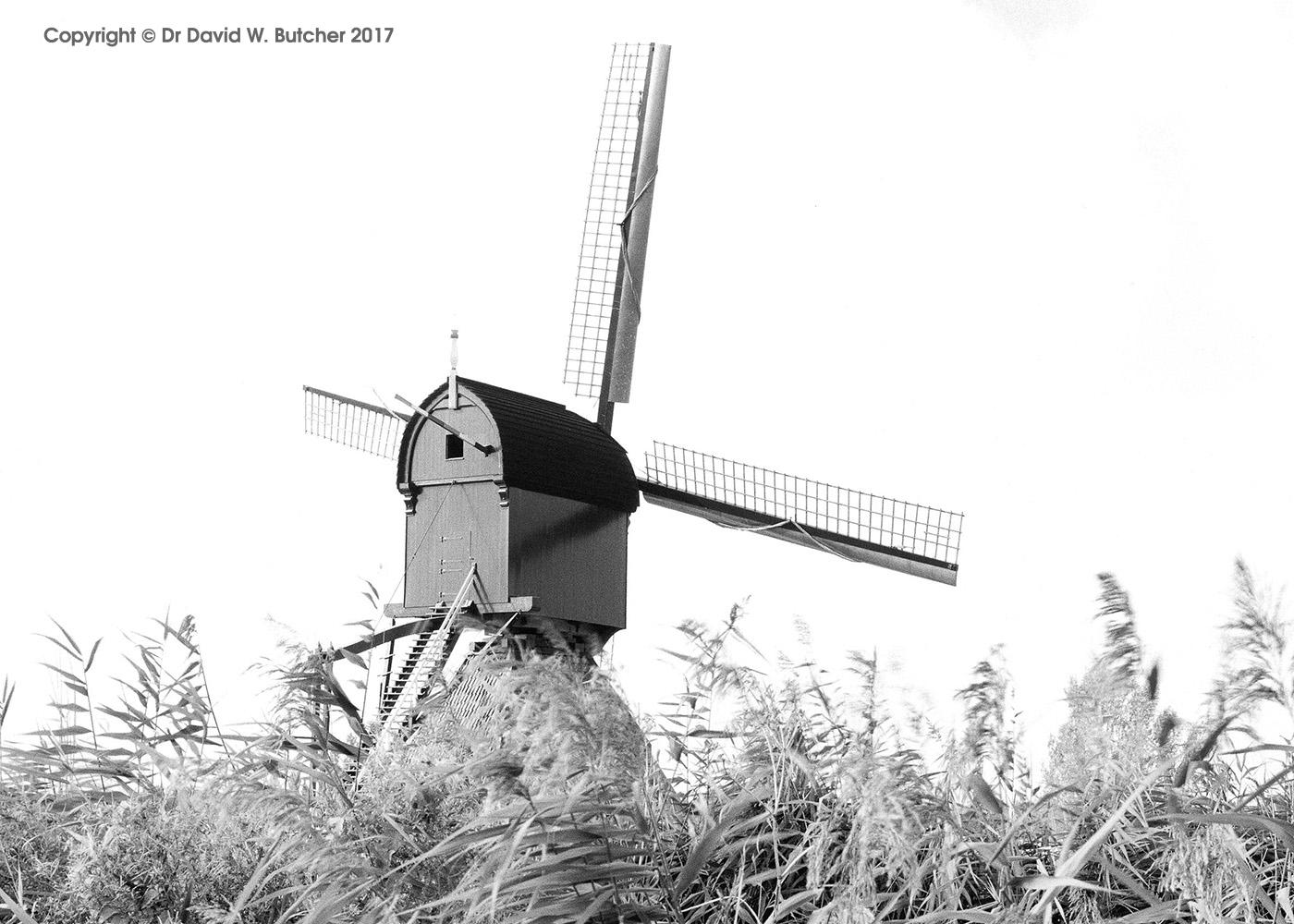 Kinderdijk Post Windmill, Rotterdam, Netherlands