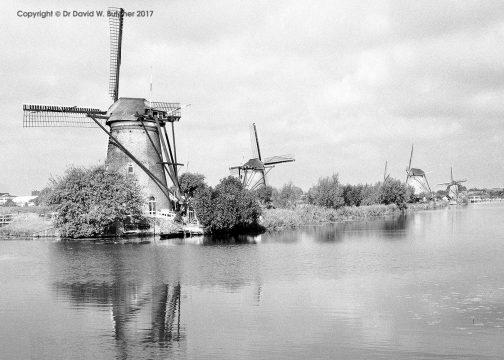 Kinderdijk Windmill Reflections, Rotterdam, Netherlands