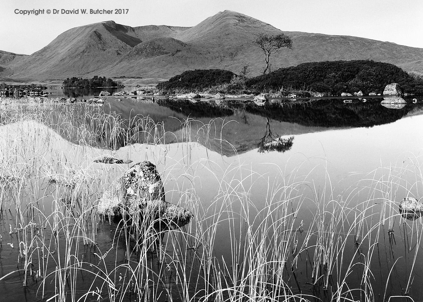 Black Mount Reflections, Rannoch Moor, Scotland