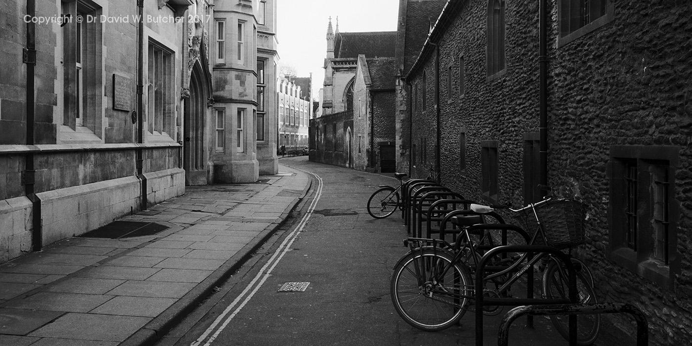 Cambridge Free School Lane, panoramic, England