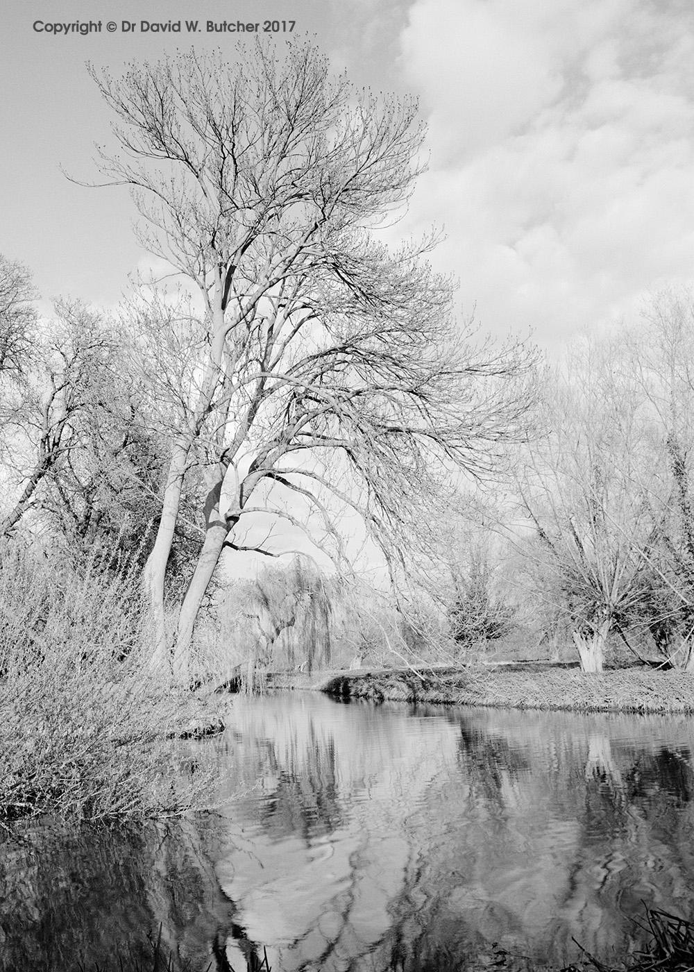Grantchester Meadows, Cambridge, England
