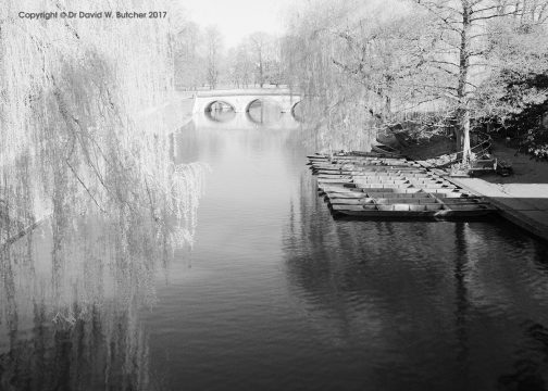 Trinity Bridge and Backs Cambridge, England