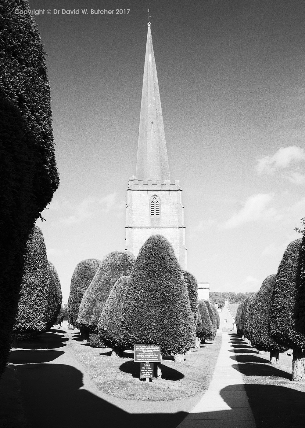Painswick Church and Yew Trees, near Gloucester, Cotswolds, England