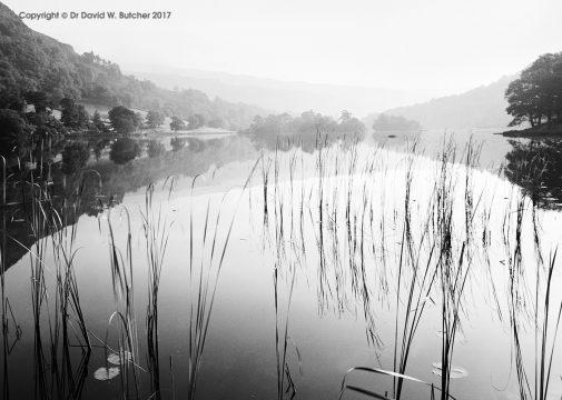 Rydal Water #1, Grasmere, Lake District