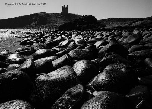 Dunstanburgh Castle Rocks