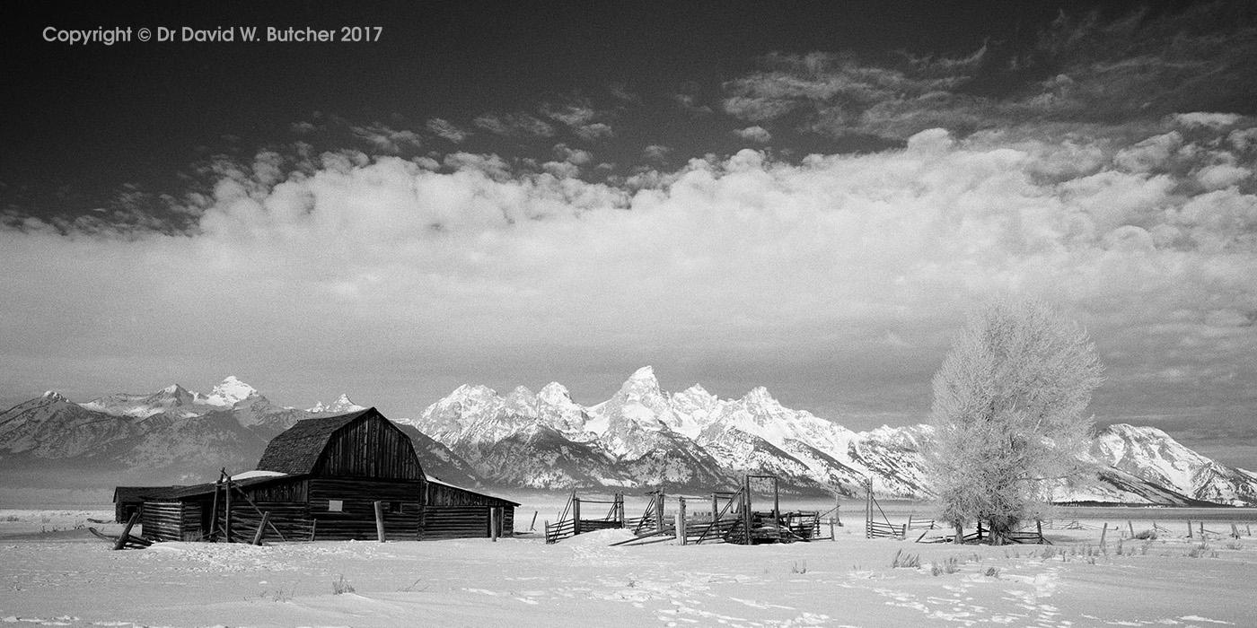 Mormon Row Barn and Grand Tetons in Winter, Jackson, Wyoming, USA