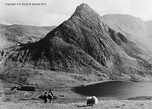 Tryfan from Pen Yr Ole Wen, Bethesda, Snowdonia, Wales