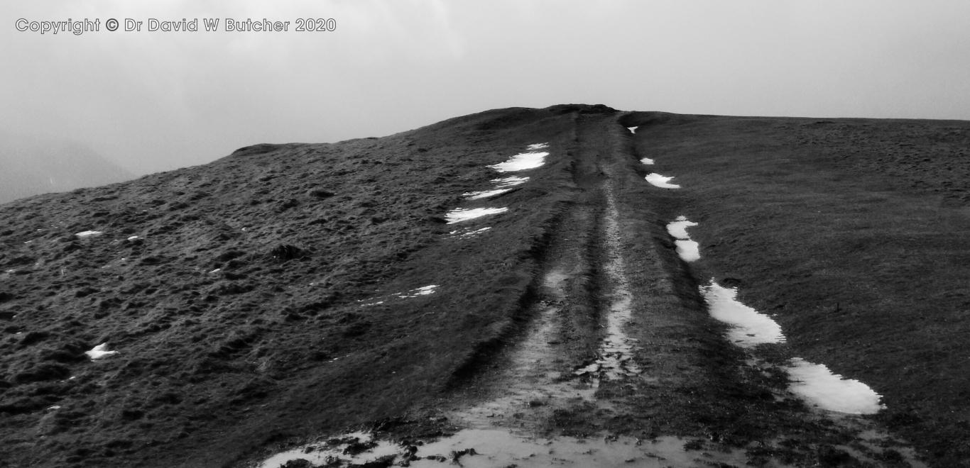 Latrigg Summit track near Keswick