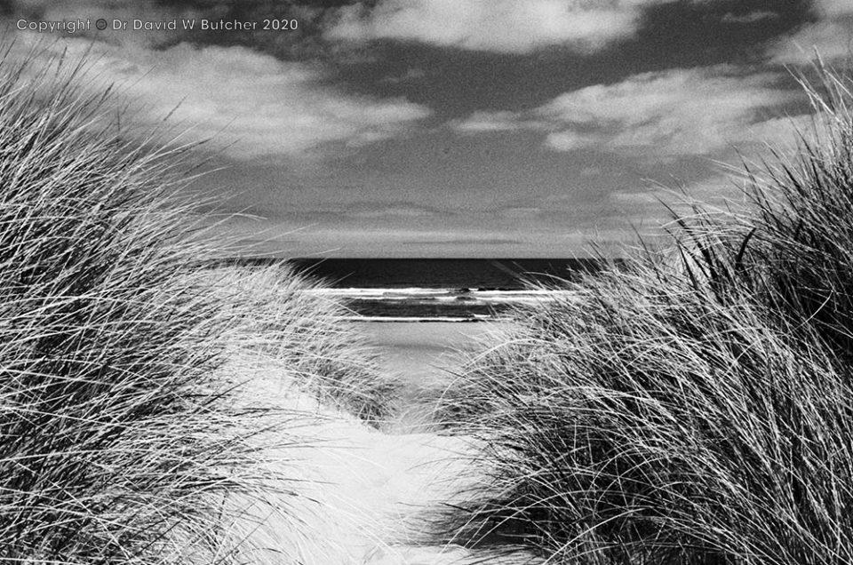 Northumberland Coast Path Trek
