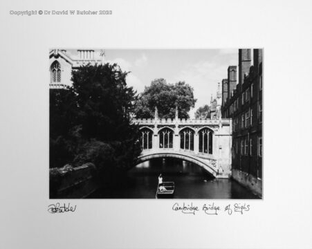 Cambridge St John's College Bridge of Sighs and punt on River Cam by Dave Butcher