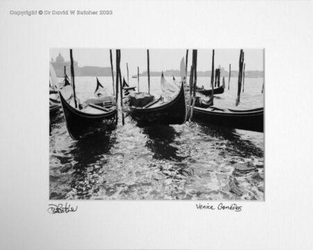 Italy, Venice Gondolas from near Piazza San Marco
